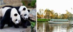 Adelaide Sightseeing Tour with Adelaide Zoo Entry and River Cruise